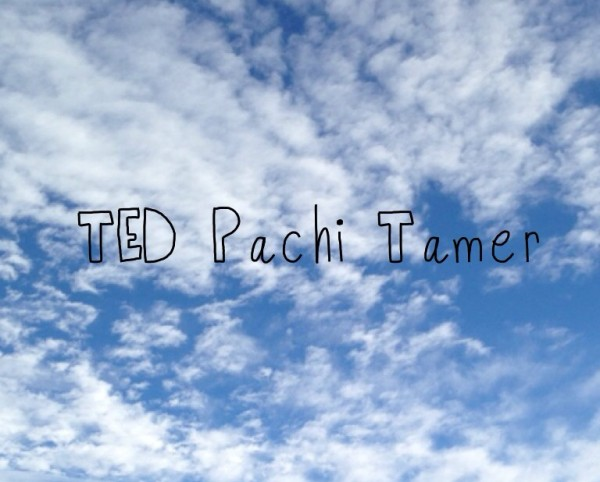 TED Pachi Tamer